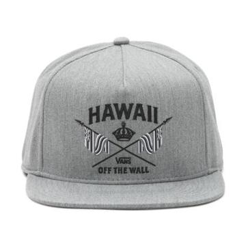 Vans Hi Crown Snapback Hat (heather Grey)