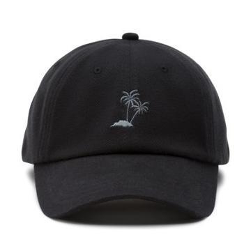 Vans Dual Palm Baseball Hat (black)