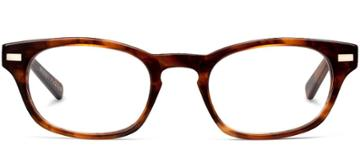 Warby Parker Eyeglasses - Miles In Amber