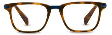 Warby Parker Eyeglasses - Brooks In Oak Barrel