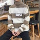 Knit Striped Turtleneck Sweater