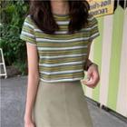 Striped Knit Cropped Top / High-waist Skirt