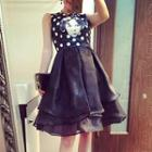 Print Sleeveless Organza Dress