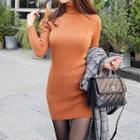 Turtleneck Plain Knit Sheath Dress