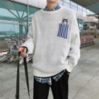 Dog Striped Pocket Sweater