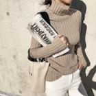 Turtleneck Slim-fit Ribbed Sweater