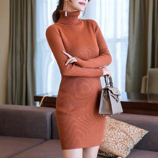 Turtleneck Long-sleeve Knit Sheath Dress
