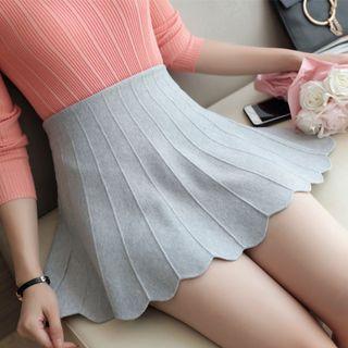 Panel A-line Knit Skirt