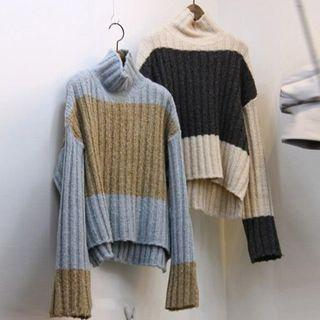 Turtleneck Colored Panel Knit Top
