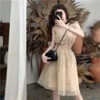 Sleeveless Mesh Mini Dress As Shown In Figure - One Size