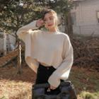Slit-back Cropped Knit Top