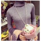 Plain Turtleneck Knit Dress
