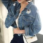 Distressed Washed Denim Trucker Jacket