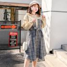 Mock Two-piece Check Panel Hooded Dress