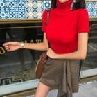 Turtle-neck Short-sleeve Rib-knit Top