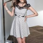 Lace-panel Dotted A-line Dress