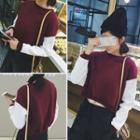 Contrast Sleeve Cropped Pullover