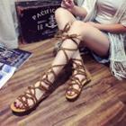 Lace Up Flat Roman Sandals