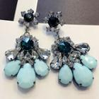 Crystal Statement Drop Earrings
