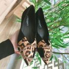 Leopard Print Panel Pointed Toe Flats