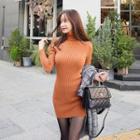 Turtleneck Knit Bodycon Dress
