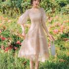 Balloon-sleeve Butterfly Embroidered Midi A-line Dress
