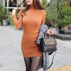 Turtleneck Knit Sheath Dress