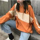 Colored Panel Hoodie