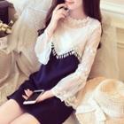 Set: Long-sleeve A-line Dress + Camisole