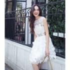 Crochet Lace Sleeveless A-line Dress