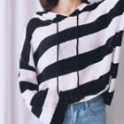 Striped Sheer Knit Hoodie