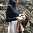 Turtleneck Long Sleeve Plain Knit Top