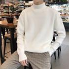 Long-sleeve Turtleneck Plain Knit Sweater