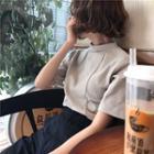 Plain Mock-neck Short-sleeve Top