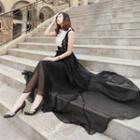 Sleeveless Lace Panel Maxi Chiffon Dress