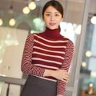 Turtle-neck Striped Knit Top