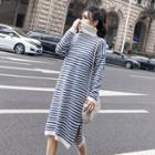 Turtleneck Stripe Knit Dress
