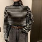 Turtleneck Striped Ribbed Sweater