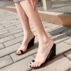 Transparent Strap Wedge Slide Sandals
