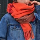 Color Panel Fringed Neck Scarf