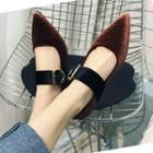 Pointed Buckled Velvet Flats
