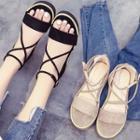 Platform Cross Strap Sandals