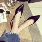 Slingback Pointy-toe Flats