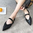 Pointed Mary Jane Flats