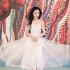 Sleeveless Panel Midi Dress