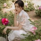 Floral Embroidered Mesh Short-sleeve Midi Qipao