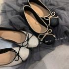 Ballerina Flats / Pointed Toe Flats (various Designs)