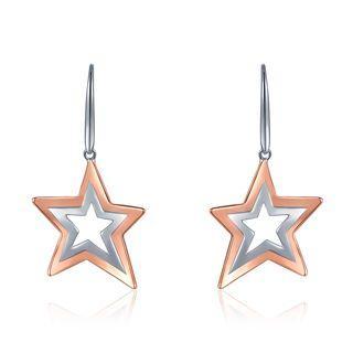 925 Sterling Silver Dangling Star Hook Earrings