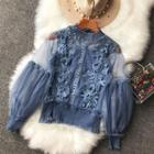 Set: Mesh-sleeve Lace Blouse + Camisole