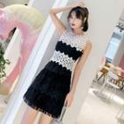 Color Panel Lace Sleeveless Dress